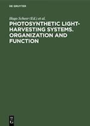 Photosynthetic Light-Harvesting Systems. Organization and Function