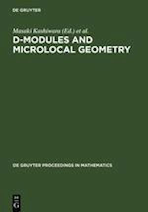 D-Modules and Microlocal Geometry