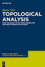 Topological Analysis (De Gruyter Series in Nonlinear Analysis and Applications)
