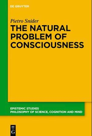 Bog, hardback The Natural Problem of Consciousness af Pietro Snider
