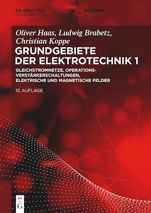 Elektrotechnik 1: Gleichstromnetze, Operationsverstärkerschaltungen, elektrische und magnetische Felder