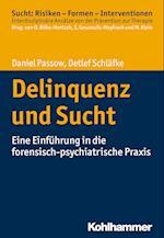 Delinquenz Und Sucht (Sucht Risiken Formen Interventionen)
