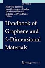 Handbook of Graphene and 2-Dimensional Materials (Handbook of Graphene and 2 Dimensional Materials)