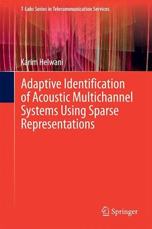 Adaptive Identification of Acoustic Multichannel Systems Using Sparse Representations