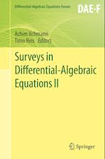 Surveys in Differential-Algebraic Equations II af Achim Ilchmann
