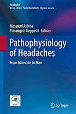 Pathophysiology of Headaches : From Molecule to Man