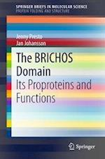 The BRICHOS Domain : Its Proproteins and Functions af Jenny Presto, Jan Johansson