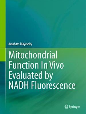 Mitochondrial Function In Vivo Evaluated by NADH Fluorescence