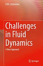 Challenges in Fluid Dynamics