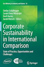Corporate Sustainability in International Comparison (Eco-efficiency in Industry & Science, nr. 31)
