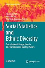 Social Statistics and Ethnic Diversity (IMISCOE Research)