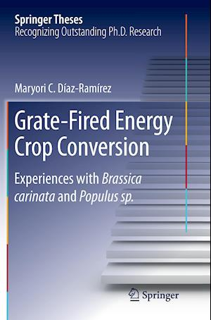 Bog, paperback Grate-Fired Energy Crop Conversion af Maryori C. Diaz-Ramirez
