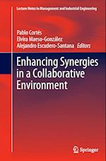 Enhancing Synergies in a Collaborative Environment (Lecture Notes in Management and Industrial Engineering)