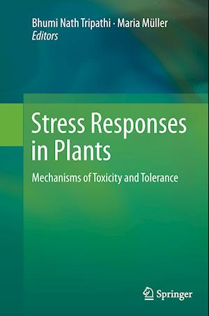 Bog, hæftet Stress Responses in Plants : Mechanisms of Toxicity and Tolerance