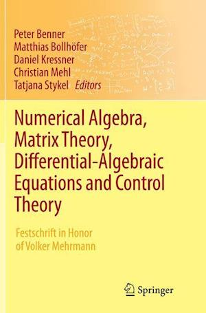Bog, hæftet Numerical Algebra, Matrix Theory, Differential-Algebraic Equations and Control Theory : Festschrift in Honor of Volker Mehrmann