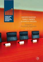 Understanding Family-Owned Business Groups : Towards a Pluralistic Approach