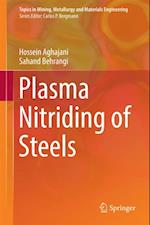 Plasma Nitriding of Steels (Topics in Mining Metallurgy and Materials Engineering)