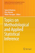 Topics on Methodological and Applied Statistical Inference (Studies in Theoretical and Applied Statistics)