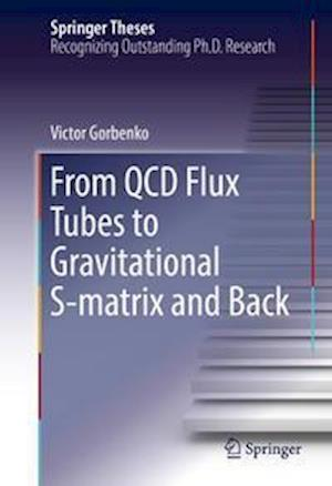 From QCD Flux Tubes to Gravitational S-matrix and Back