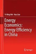 Energy Economics: Energy Efficiency in China