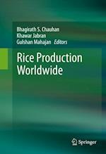 Rice Production Worldwide
