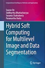 Hybrid Soft Computing for Multilevel Image and Data Segmentation (Computational Intelligence Methods and Applications)
