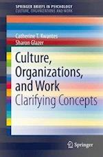 Culture, Organizations, and Work : Clarifying Concepts