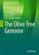 Olive Tree Genome (Compendium of Plant Genomes)