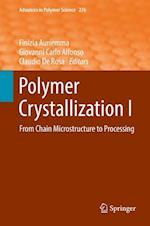 Polymer Crystallization I (ADVANCES IN POLYMER SCIENCE, nr. 276)