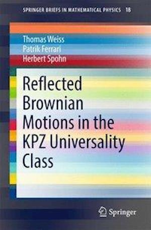 Bog, paperback Reflected Brownian Motions in the KPZ Universality Class af Thomas Weiss