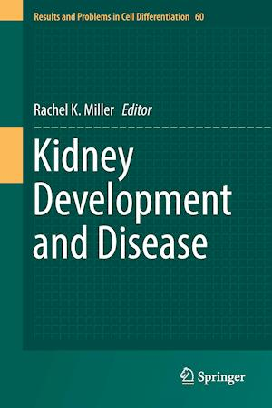 Bog, hardback Kidney Development and Disease