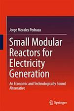 Small Modular Reactors for Electricity Generation : An Economic and Technologically Sound Alternative
