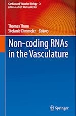 Non-Coding RNAs in the Vasculature (Cardiac and Vascular Biology)