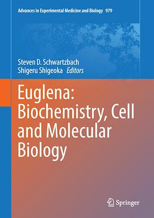 Bog, hardback Euglena: Biochemistry, Cell and Molecular Biology