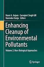 Enhancing Cleanup of Environmental Pollutants : Volume 2: Non-Biological Approaches