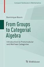 From Groups to Categorial Algebra : Introduction to Protomodular and Mal'tsev Categories
