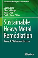 Sustainable Heavy Metal Remediation (Environmental Chemistry for a Sustainable World, nr. 8)