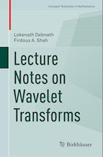 Lecture Notes on Wavelet Transforms (Compact Textbooks in Mathematics)