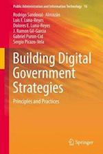 Building Digital Government Strategies (Public Administration and Information Technology, nr. 16)