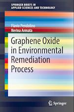 Graphene Oxide in Environmental Remediation Process (Springerbriefs in Applied Sciences and Technology)