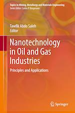 Nanotechnology in Oil and Gas Industries (Topics in Mining Metallurgy and Materials Engineering)