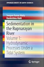 Sedimentation in the Rupnarayan River (Springerbriefs in Earth Sciences)