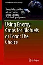Using Energy Crops for Biofuels or Food: the Choice (Green Energy and Technology)