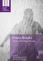 Prison Breaks (Palgrave Studies in Prisons and Penology)