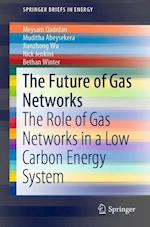 The Future of Gas Networks in Low Carbon Energy Systems (Springerbriefs in Energy)