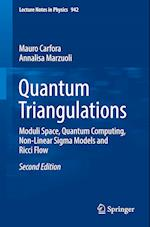 Quantum Triangulations (LECTURE NOTES IN PHYSICS, nr. 942)