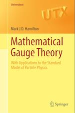Mathematical Gauge Theory : With Applications to the Standard Model of Particle Physics