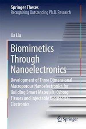 Biomimetics Through Nanoelectronics