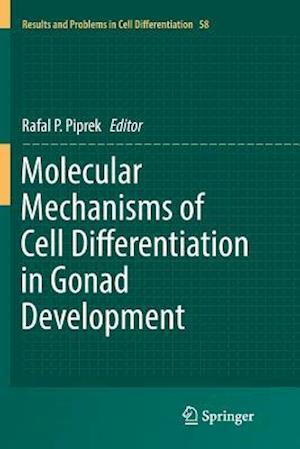 Molecular Mechanisms of Cell Differentiation in Gonad Development