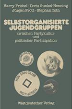 Selbstorganisierte Jugendgruppen zwischen Partykultur und politischer Partizipation
